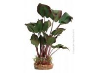 Aqua One Plants